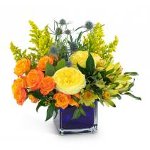 Bloom with Brilliance Arrangement