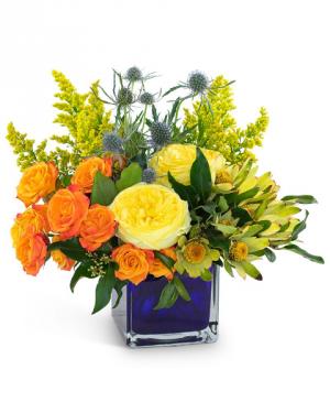 Bloom with Brilliance Arrangement in Kirtland, OH | Kirtland Flower Barn