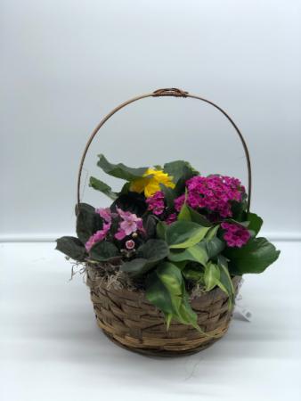 Bloomin' Basket Planter