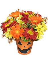 Bloomin' Jack-O-Lantern Halloween Flowers in Riverview, Florida | BAY BOUQUET FLORAL STUDIO RIVERVIEW