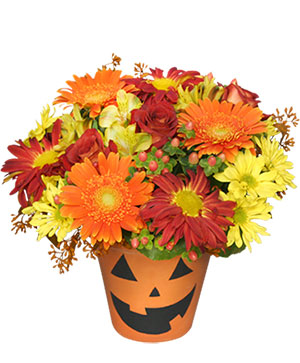 Bloomin' Jack-O-Lantern Halloween Flowers in Corpus Christi, TX | Golden Petal Florist