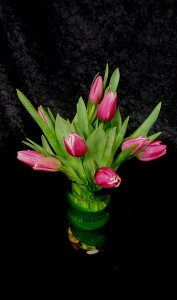 Blooming Adoration Fresh Cut Tulips in Port Huron, MI | CHRISTOPHER'S FLOWERS