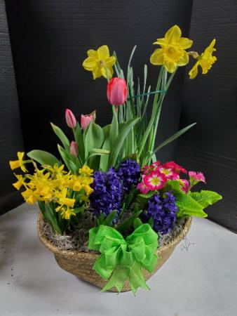Blooming Basket Blooming basket with seasonal flowers