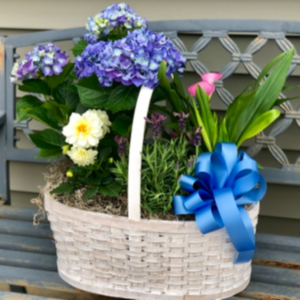 Blooming Basket Outdoor Plant Arrangement  in Mattapoisett, MA | Blossoms Flower Shop
