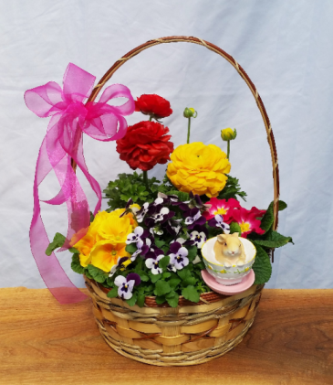 """Blooming Bunny Basket"" Blooming plants basket"