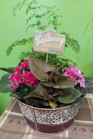 Blooming Dishgarden