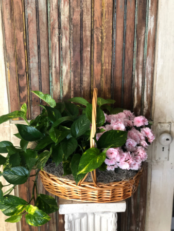 Blooming Double Plant Basket