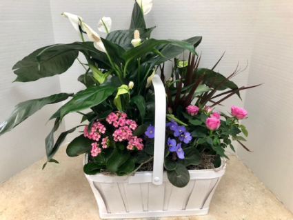 Blooming Garden Basket #2