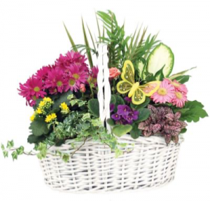 Blooming Garden Basket  in Ozone Park, NY | Heavenly Florist