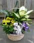 Blooming & green plants & angel in basket