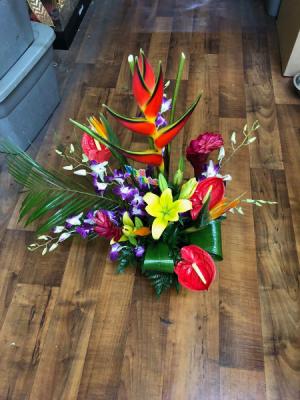 Blooming Joy tropical in Tampa, FL | Island Flowers