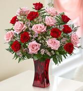 blooming love  18 roses