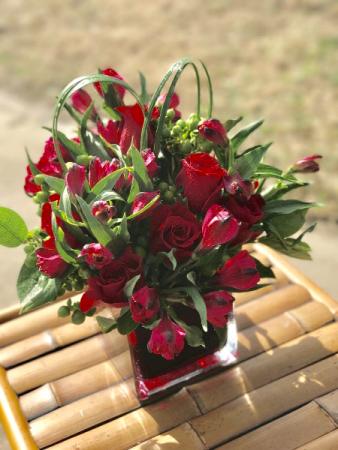 Blooming Love  Arrangement