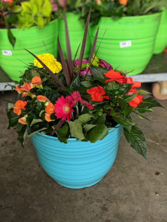 Blooming Patio Pot