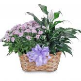 Blooming Peacefully Basket