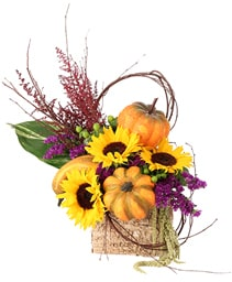 Blooming Pumpkin Patch Floral Design