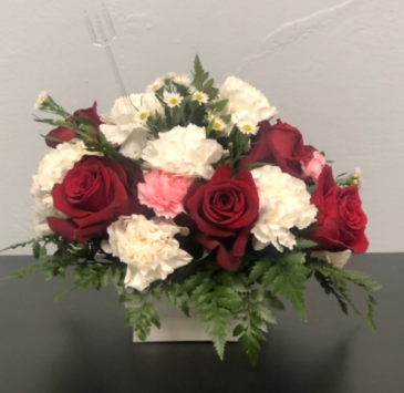 Blooming Red and White Valentine