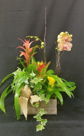 Blooming Rustic Box Blooming Planter