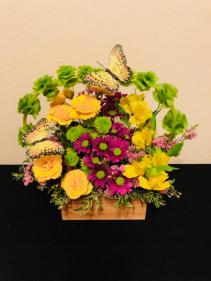 Blooming Sanctuary  Arrangement