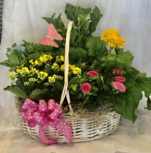 Blooming Spring Basket   in Virginia Beach, VA | FLOWER LADY