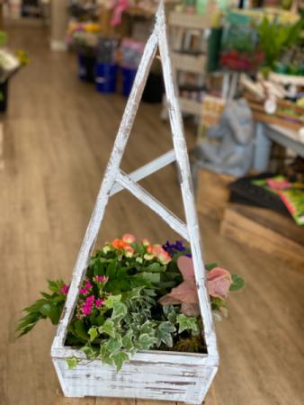 Blooming Trellis Garden