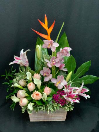 Blooming Tropical