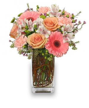 BLOOMING WITH ADMIRATION Bouquet in Sherman, TX | COUNTRY FLORIST