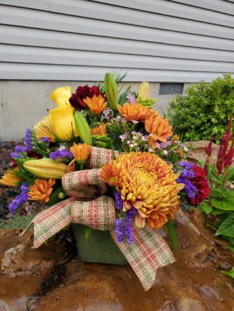 Blooming with autumn  fresh arrangement