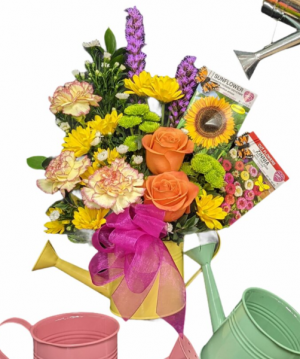 Spring Blooms SPRING SPECIAL in Lewiston, ME | BLAIS FLOWERS & GARDEN CENTER