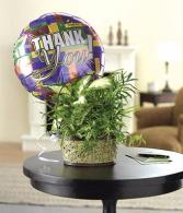 Bloomnet's Gratitude Garden Basket