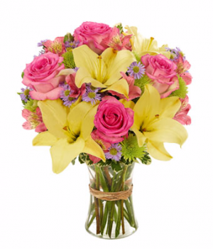 Bloomnet's Vibrant Beauty Bouquet  in Valley City, OH | HILL HAVEN FLORIST & GREENHOUSE