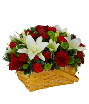 Bloomnet's Winter Greetings Basket  in Valley City, OH | HILL HAVEN FLORIST & GREENHOUSE