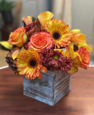 Blooms of Fall