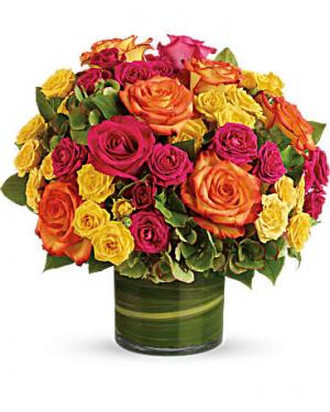 Blossoms in Vogue  in Lauderhill, FL | BLOSSOM STREET FLORIST