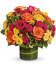 Blossoms in Vogue By Geno Orientation: All-Around