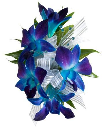 Blue Bom Orchid Wrist Corsage