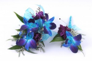 Blue Bomb  in Blaine, MN | ADDIE LANE FLORAL & GIFTS