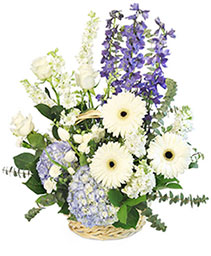 Blue Bundles of Joy Basket Arrangement