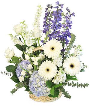 Blue Bundles of Joy Basket Arrangement in Saugerties, NY | THE FLOWER GARDEN