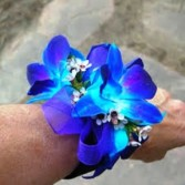 BLUE DENDROBIUM CORSAGE OR WRISTLET