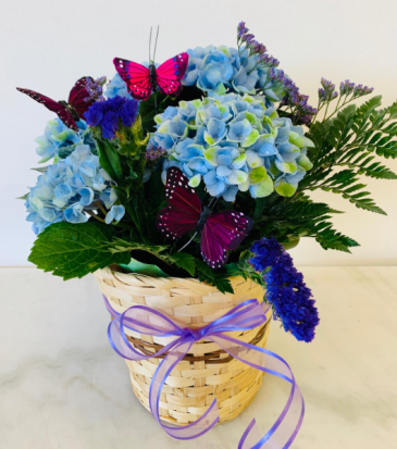 Blue Fantasy Arrangement