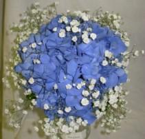 Blue Hydrangea Bouquet Price Range: $35 - $45