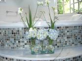 Blue Hydrangeas Spring