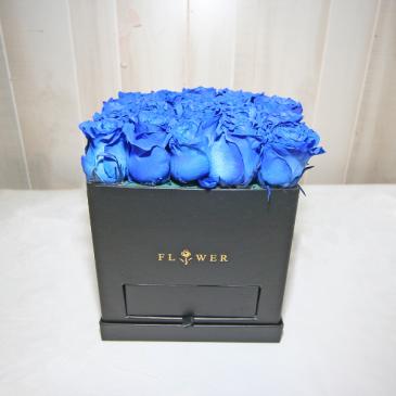 BLUE MONDAY Square Box