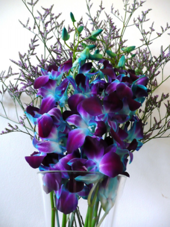 Blue Orchid Smile