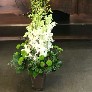 White Orchids Container Design