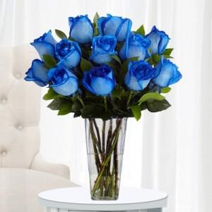 blue roses vased in spruce grove ab tarah s grower direct