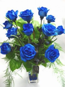 One Dz Blue Valentine's Day Roses!!!! Free Chocolate or Balloon!
