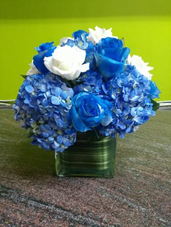 Blue Winter In Astoria Ny Lic Florist