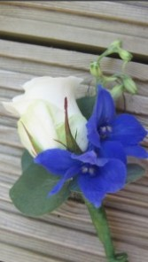 Blue wonder Boutonnière